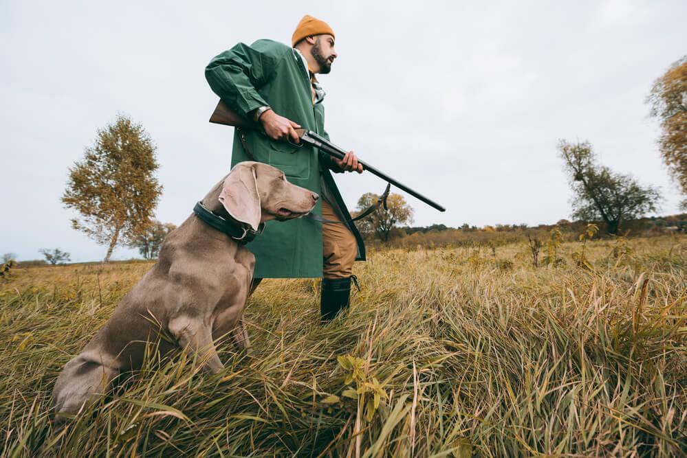 Jäger mit Jagdhund