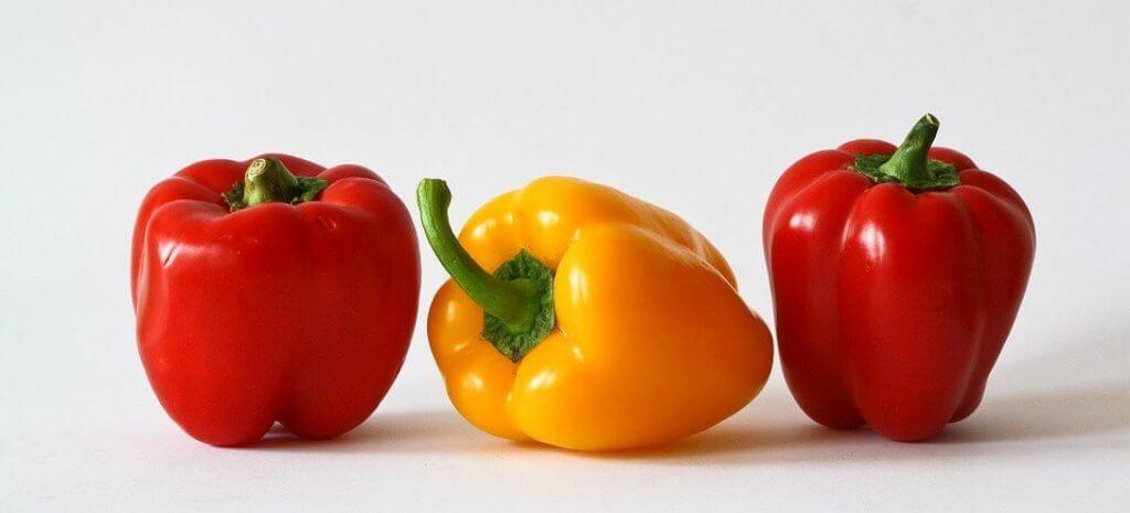 Dürfen Hunde Paprika fressen