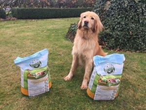 Hundefutter im Praxistest und Vergleich