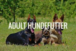 Adult Hundefutter