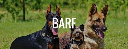 Hunde barfen