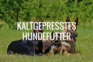 Kaltgepresstes Hundefutter