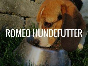 Romeo Hundefutter