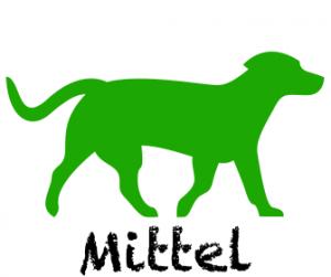 Hundefutter für mittlere Hunde