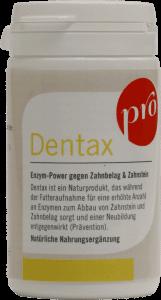 Enzym-Power gegen Zahnbelag und Zahnstein bei Hunden