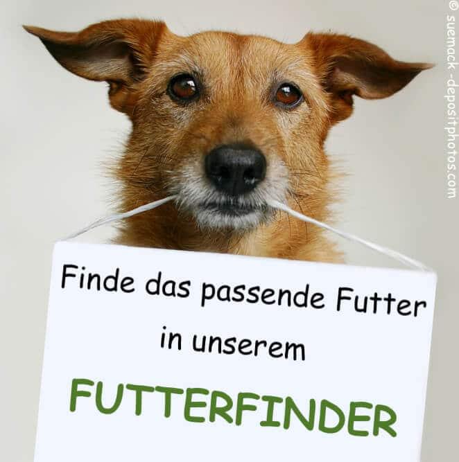 Futterfinder für Hunde
