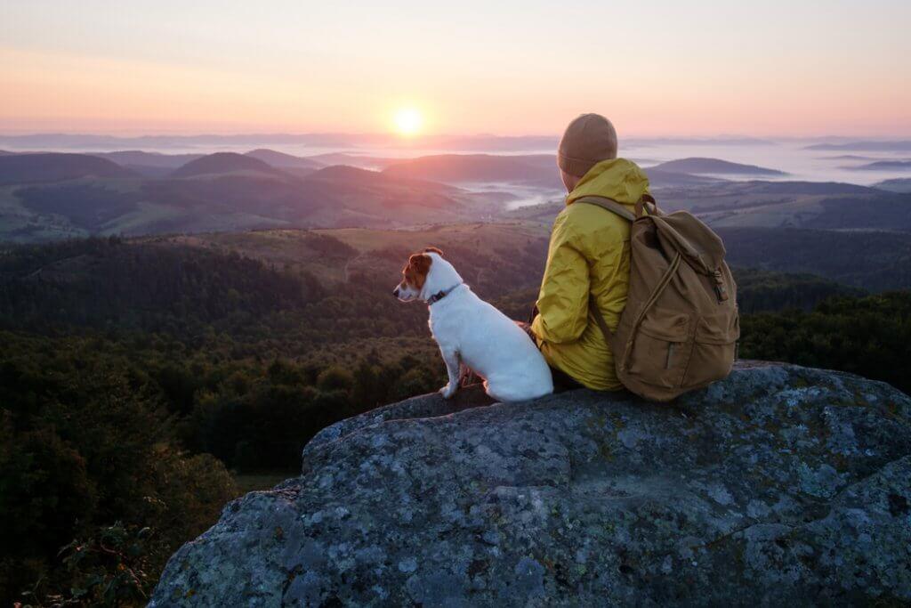 Mit dem Hund wandern gehen