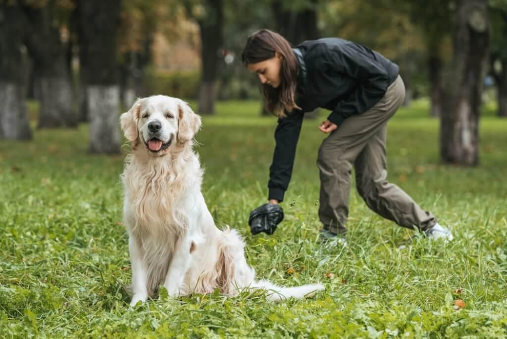 Stuhlgang Und Kot Beim Hund Gesundheit Futterqualität