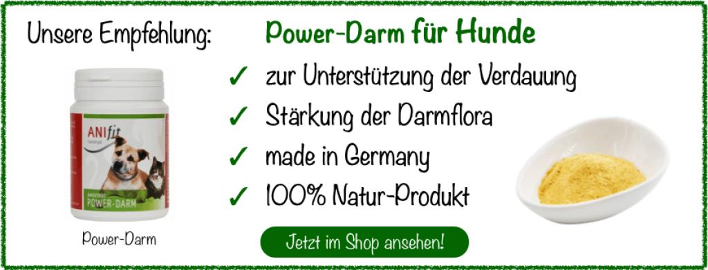 Power-Darm für Hunde