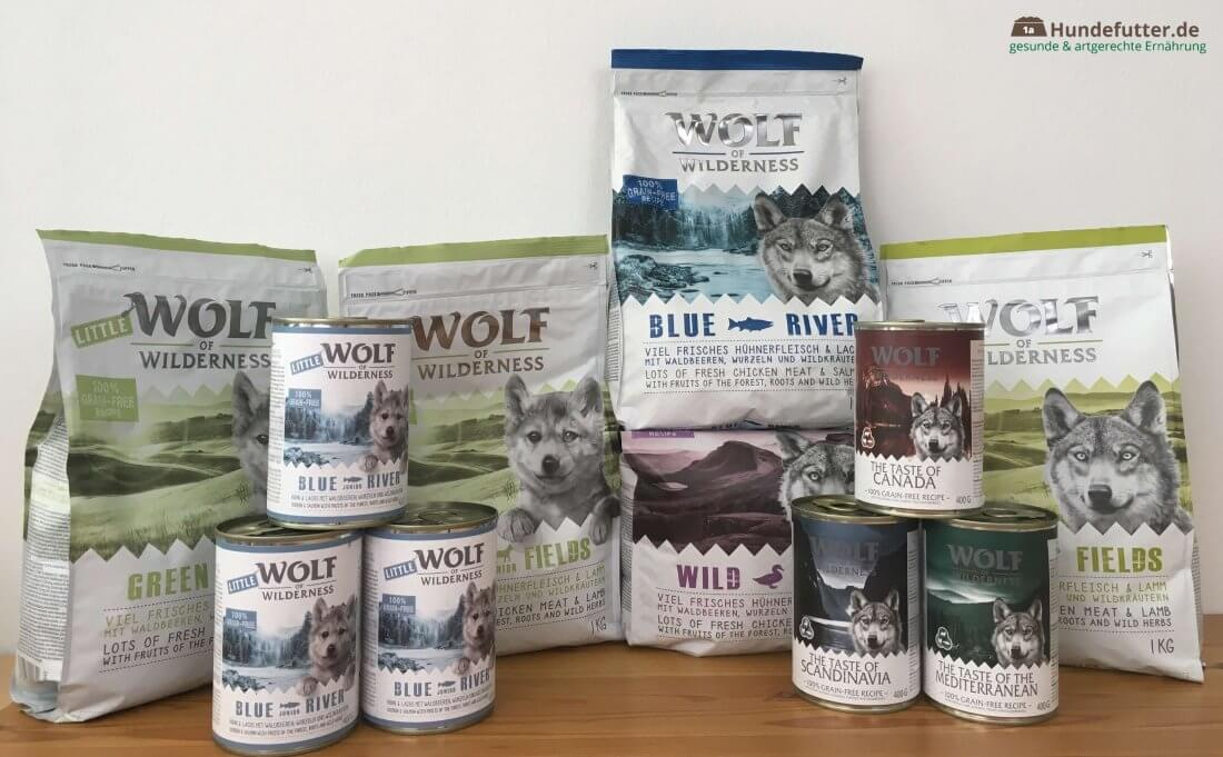 Wolf of WIlderness Hundefutter im Praxistest