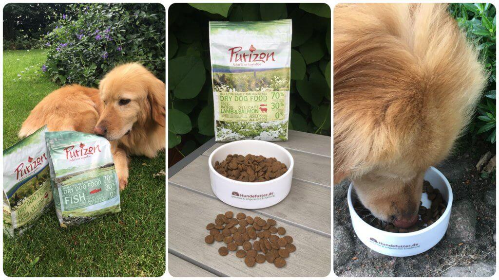 Purizon Hundefutter im Test