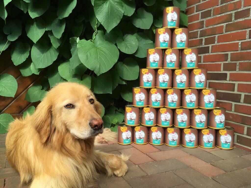 RyDog Hundefutter im Test