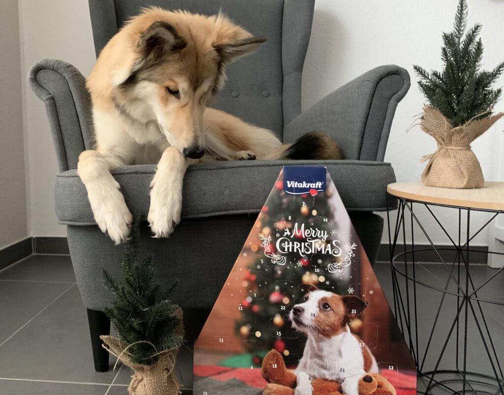 Vitakraft Hunde Adventskalender