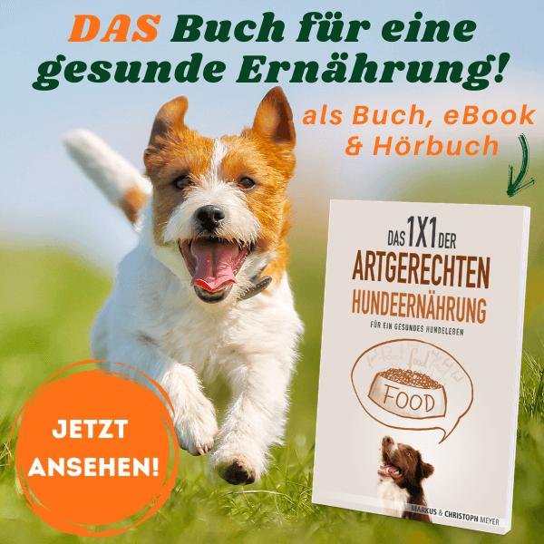 Gesunde Hundeernährung Buch