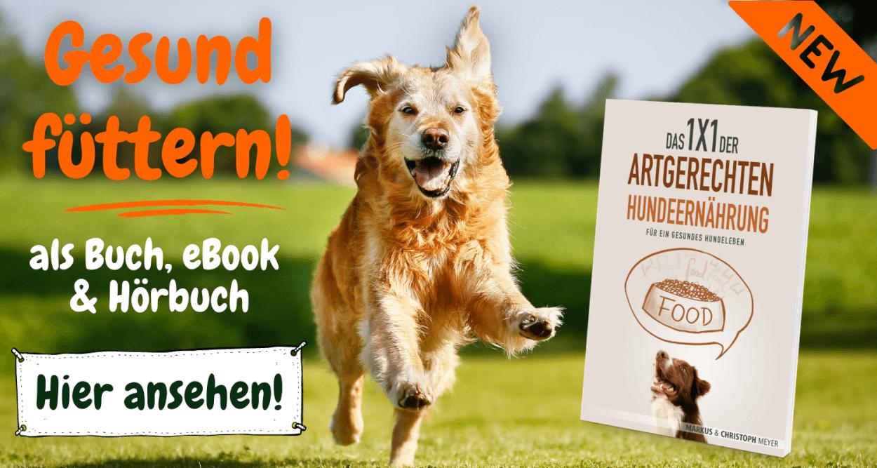Hundeernährung Ratgeber Buch
