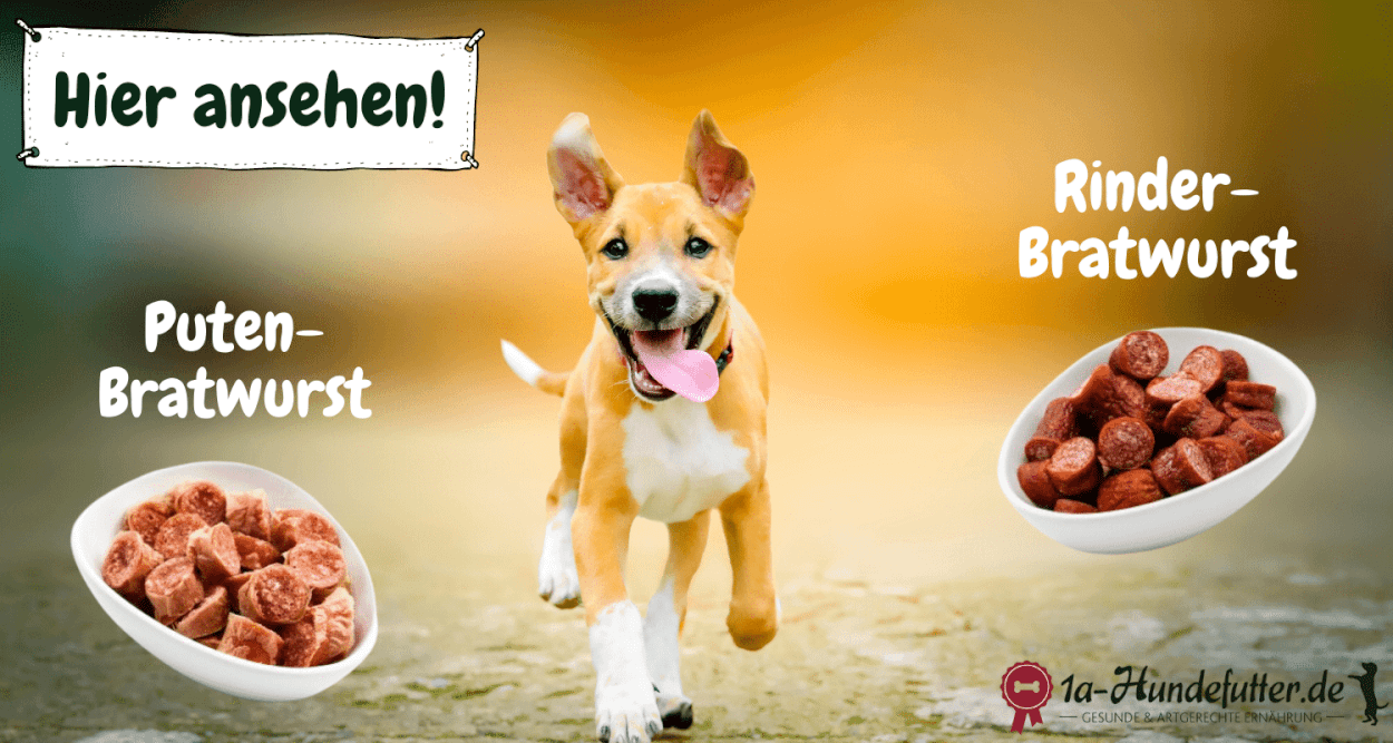 Bratwurst für Hunde